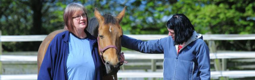 Equine therapy course